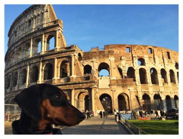 Veganette & Colosseo
